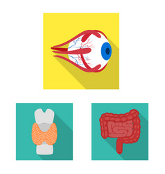 Human and health icon set vector