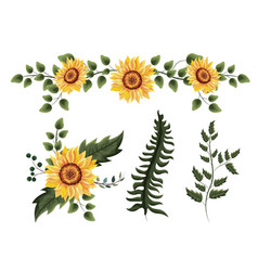 Set exotic sunflowers plants with branches leaves vector
