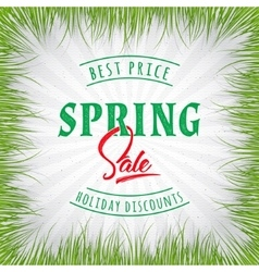 Big Sale spring insignia and labels for any use vector image