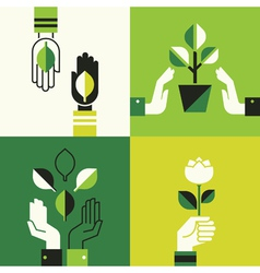 Caring hands holding leaves vector image vector image