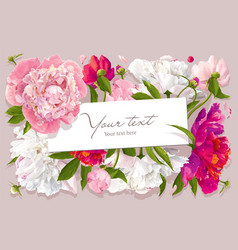 Peony card 2 vector image vector image