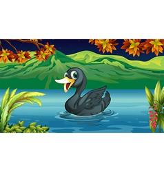 A black swan at the lake vector image
