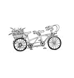 Hand drawn tandem city bicycle with basket of vector