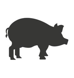 Pig farm isolated icon design vector