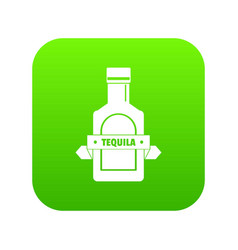 tequila icon green vector image