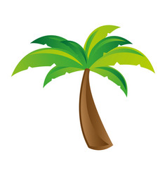white background with palm tree vector image