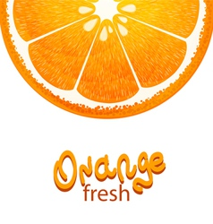with half of orange on white background vector image vector image