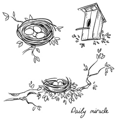 Hand drawn nests and a birdhouse vector image