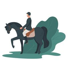 jockey rising horse racing hobby equine leisure vector image