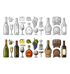 set drinks made from grapes wine brandy vector image