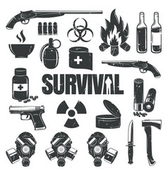Set icons on theme survival vector