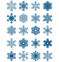 set of different blue snowflakes vector image