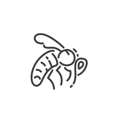 simple line art icon bee pictogram design vector image