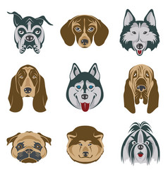 dog heads set vector image vector image