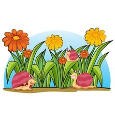 Three snails in the garden vector image vector image