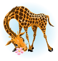 Giraffe in love vector image