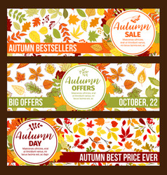 autumn sale banners fall leaf foliage vector image