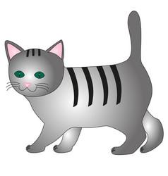 cartoon gray kitten vector image