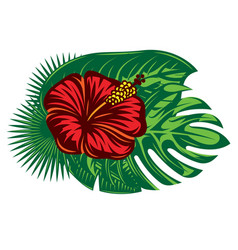 composition hibiscus flower and various palm vector image
