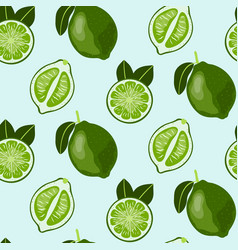 Hand drawn seamless pattern with lime fruit vector