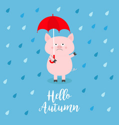 hello autumn pig holding red umbrella rain drops vector image