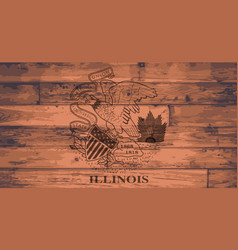 Illinois flag brand vector