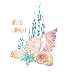 Marine life background seashell seastar summer vector