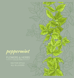 Peppermint background vector