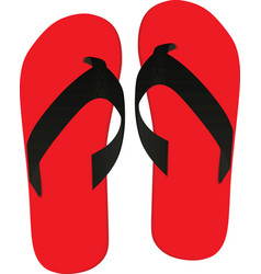red flip flops vector image