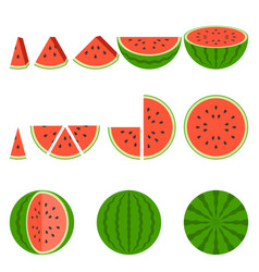 whole and sliced of watermelon vector image vector image