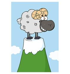 Sheep on a mountain vector image vector image