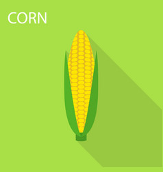 corn icon flat style vector image