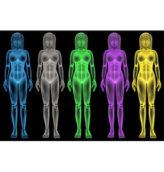 Female coloured bodies vector