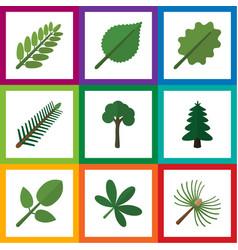 Flat icon natural set evergreen park alder vector