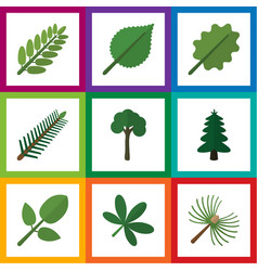 Flat icon natural set of evergreen park alder vector