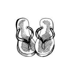 Flip-flops hand drawn travel vector