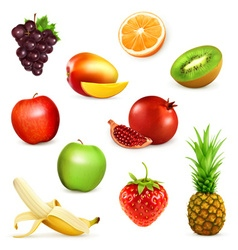 Fruits set of vector