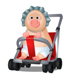 funny animated pig in the pram isolated on white vector image