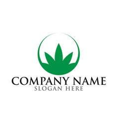 Green marijuana leaf logo template vector