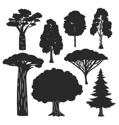 trees forest black silhouettes isolated vector image