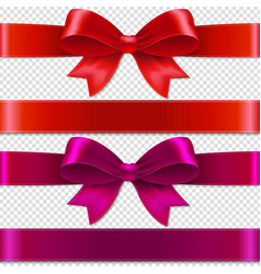 color bows isolated vector image