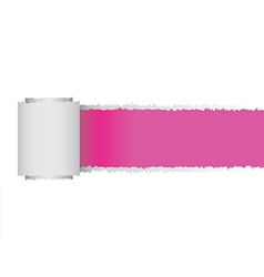 Torn paper roll vector image