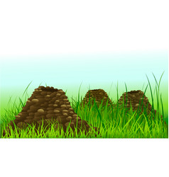 it looks like there is a mole in our garden vector image vector image