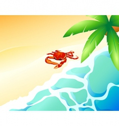 crab beach vector image