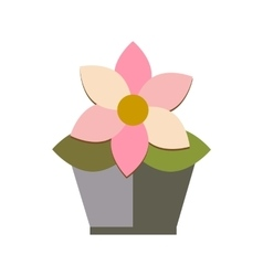 flower in pot on white background flat vector image
