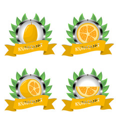 For ripe fruit yellow kumquat vector
