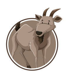 goat on circle banner vector image