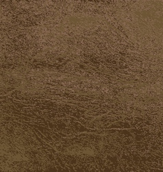 Leather Texture 2 vector image