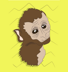 monkey portrait on a colored background vector image