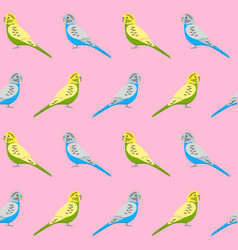 Seamless pattern with budgie parrots vector